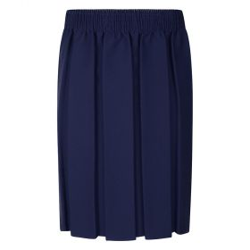 Navy Boxed Pleated Skirt